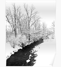 Winter Path Poster