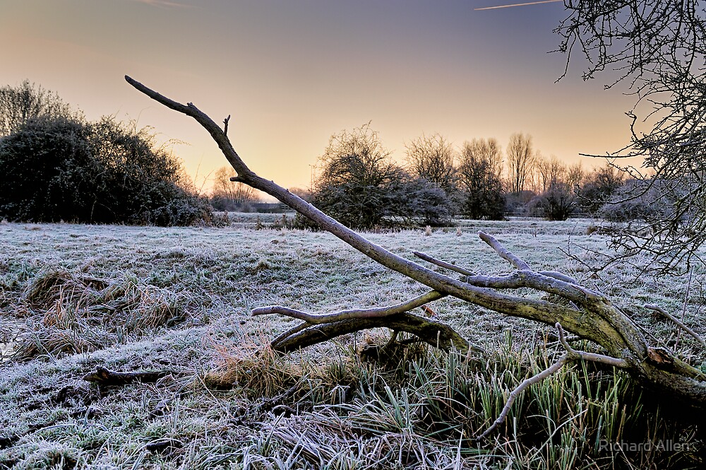 Frosty Morning by Lea Valley Photographic