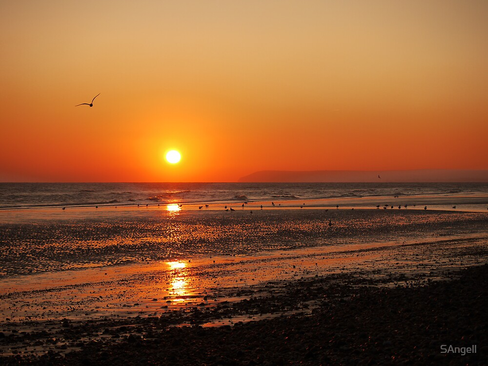 Another Bexhill Sunset by SAngell