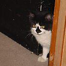 killer hiding in the corner by memaggie