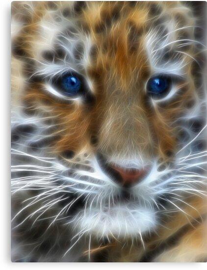Siberian Tiger Cub by Beverlytazangel