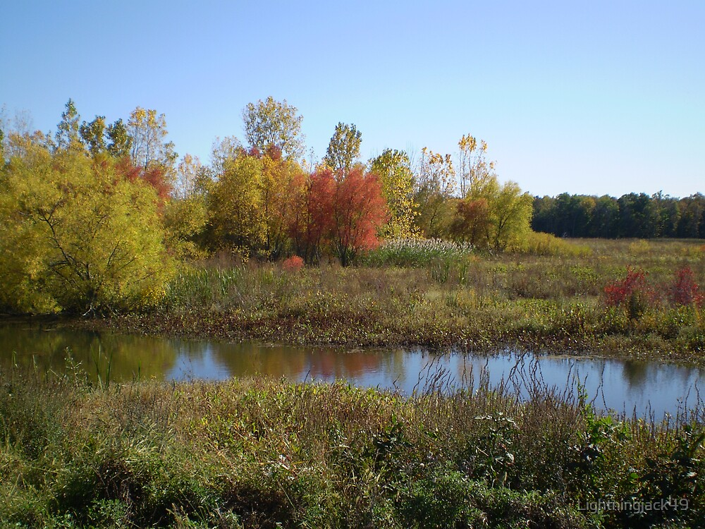 Fall On The Marsh by Lightningjack49