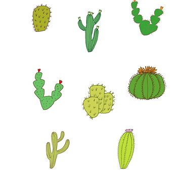 A selection of cacti by sparklehen