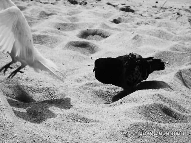 I will follow you... by JakeLieberman