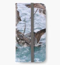 Pelicans! iPhone Wallet/Case/Skin