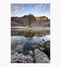 HOAR FROST Photographic Print
