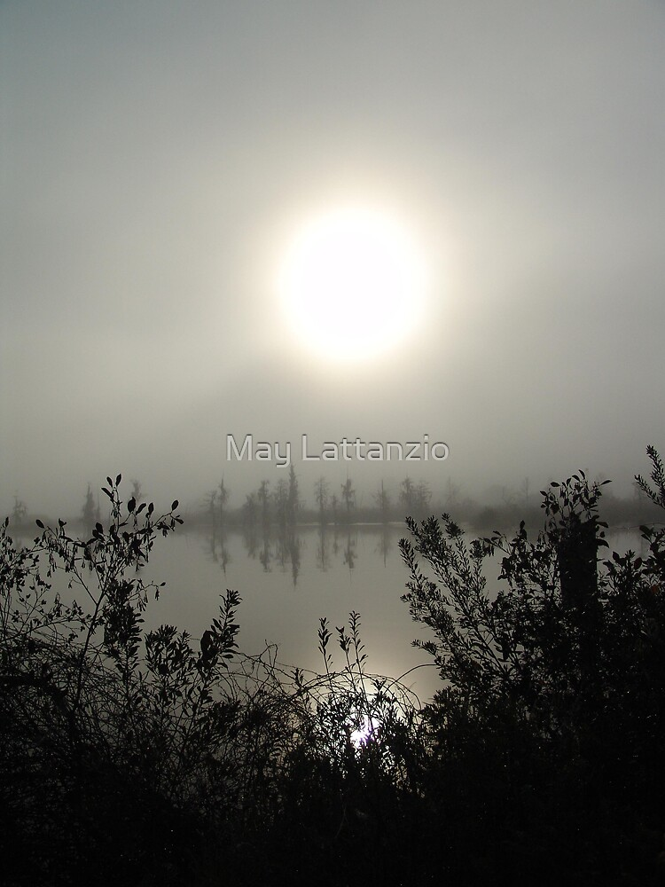 Burning Through by May Lattanzio