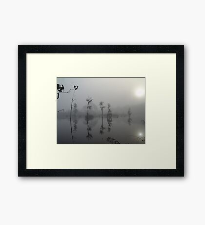 The Rorschack Sisters Framed Print