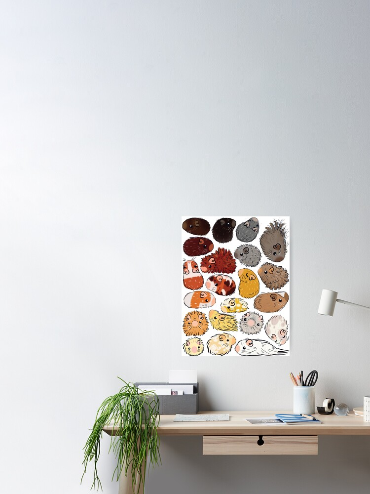 Alternate view of Guinea Pig Gradient Poster