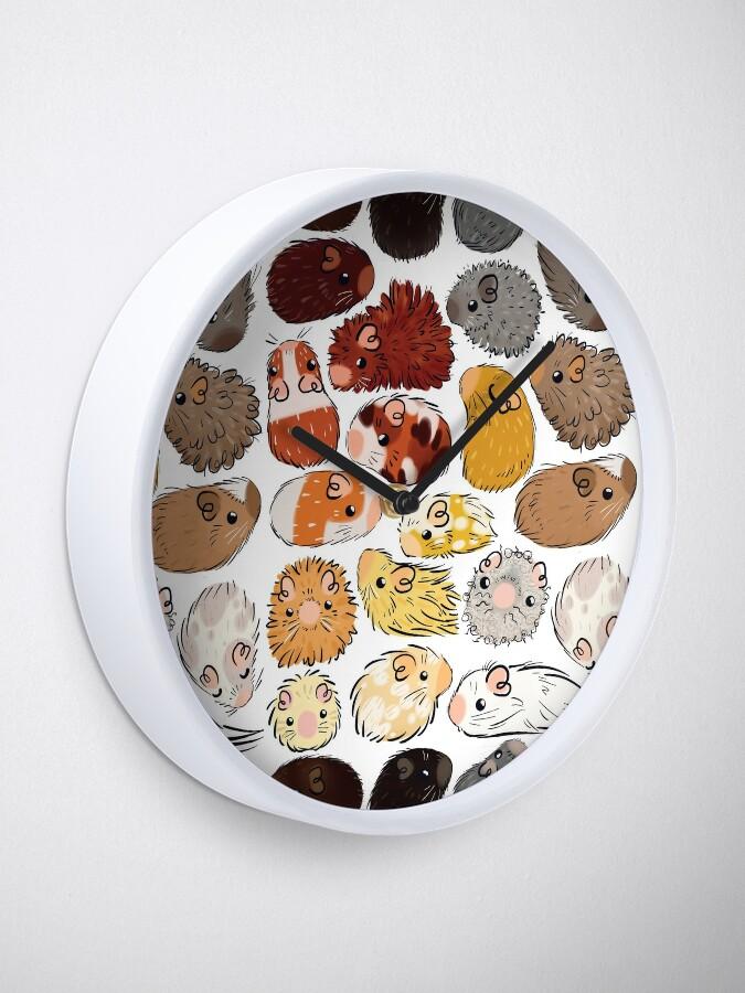 Alternate view of Guinea Pig Gradient Clock