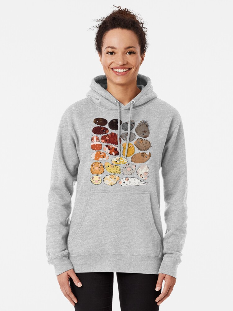 Alternate view of Guinea Pig Gradient Pullover Hoodie