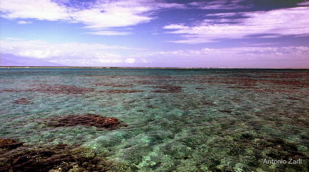 Seascape by Antonio Zarli