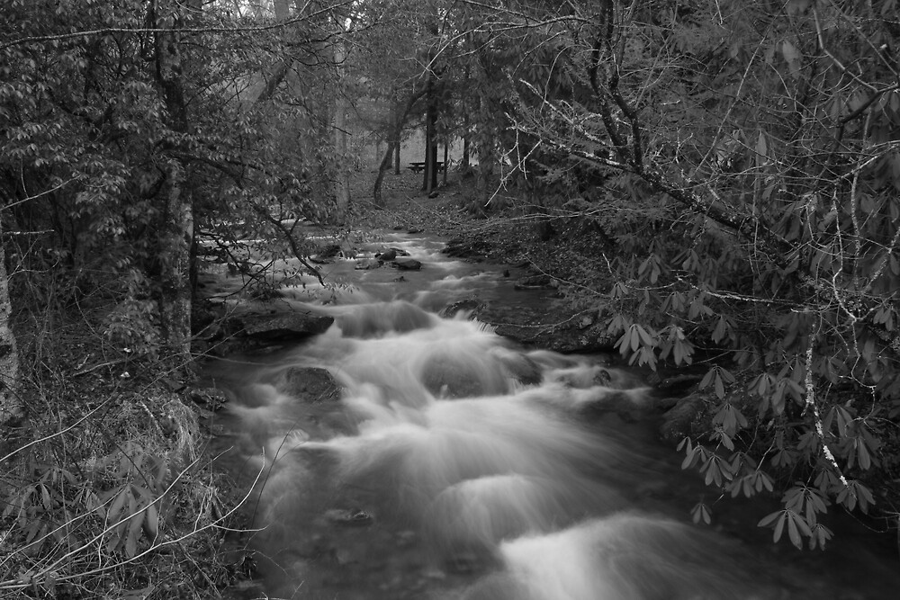 Just Flowing by Forrest Tainio