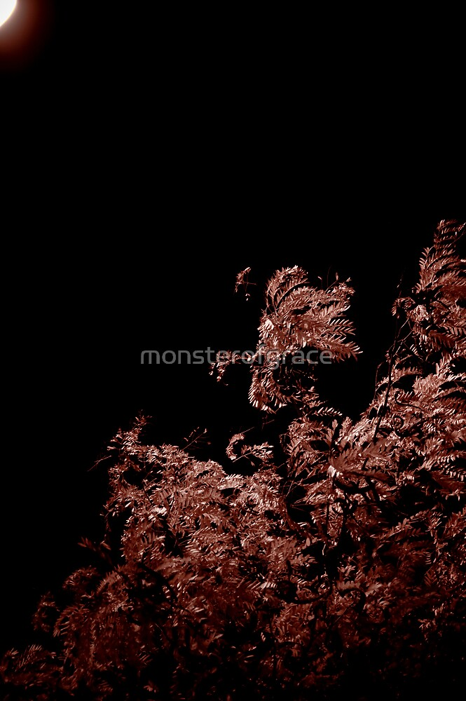 Dark Light by monsterofgrace