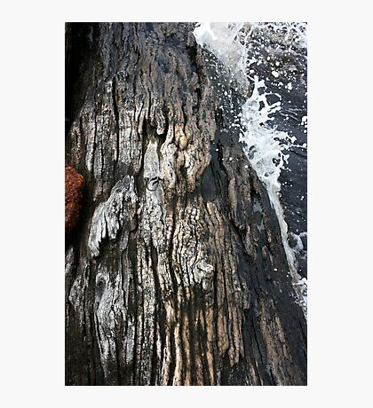 Weathered by water Photographic Print