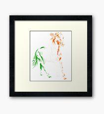 Irish Horse  Framed Print
