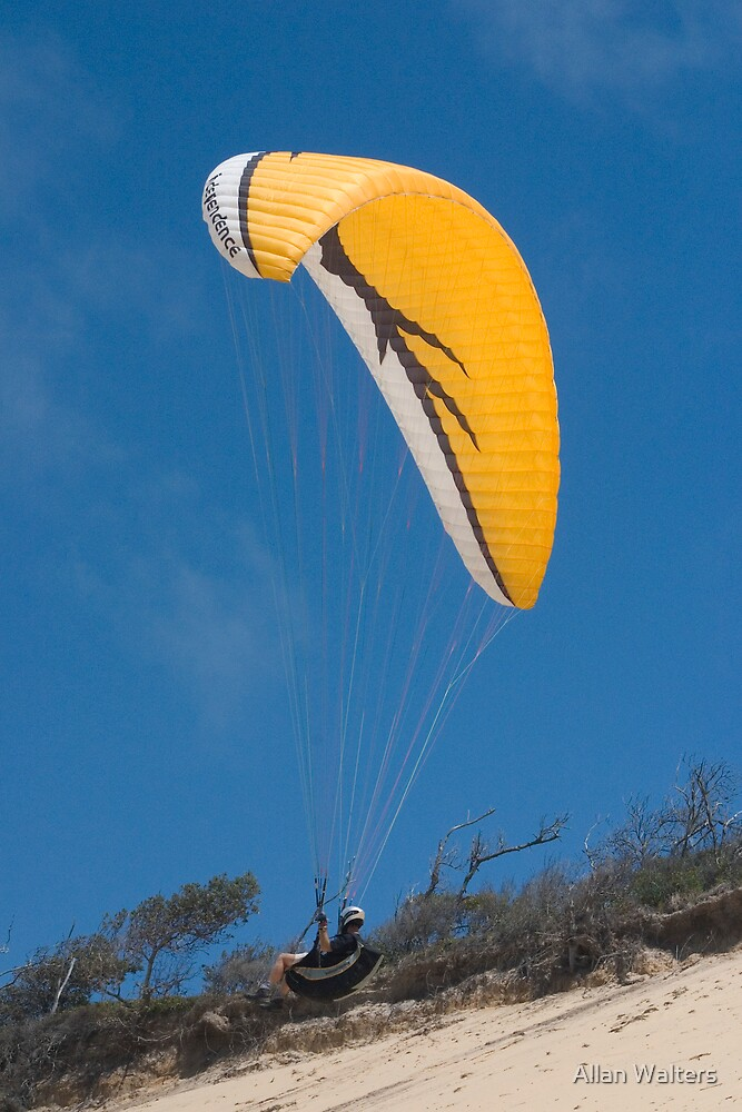 Hang Glider by Allan Walters