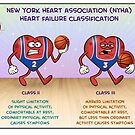 Functional Classification of Heart Failure by Medcomic