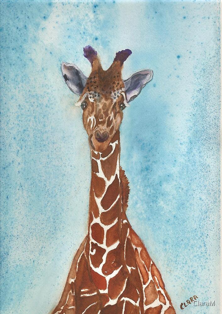Baby Giraffe by ClaraM