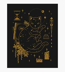Magical Assistant Photographic Print