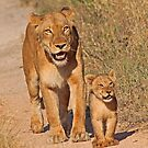 Mom and cub -smile for camera by Anthony Goldman