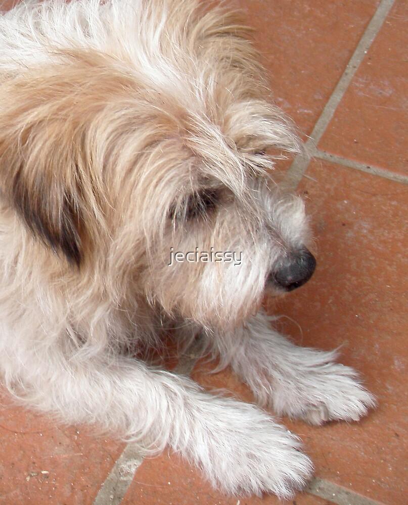 Maggie my dog (Issy age 5) by jeciaissy