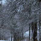 A Country Road after a Snow by Larry Llewellyn