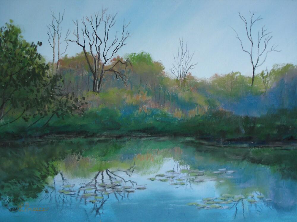 Autumn Swamp by Linda Preece