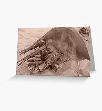 Horseshoe Greeting Card