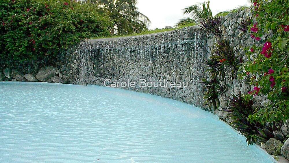 Stone Wall Fountain by Carole Boudreau