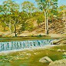 Dights Falls on the Yarra River by Dai Wynn