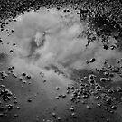 reflections by jesnowson