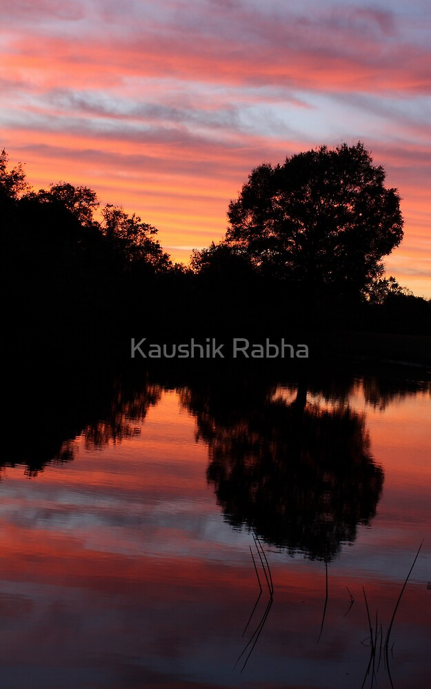 The Evening by Kaushik Rabha