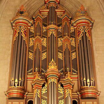 Flentrop Organ by Cynthia48