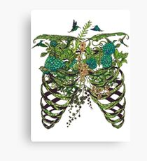Nature Rib Cage Canvas Print