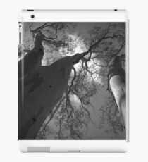 Scary Trees- Moores Road iPad Case/Skin