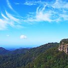 View to the Gold Coast from Springbrook ,Qld. by Virginia  McGowan