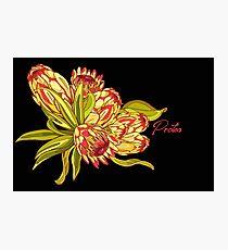 Protea Flower Pattern - Black Photographic Print
