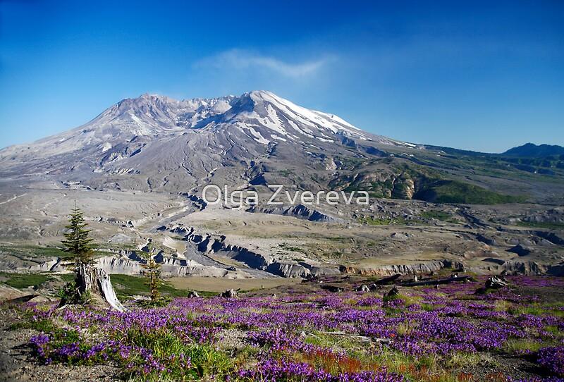 Quot Mount St Helens Quot By Olga Zvereva Redbubble