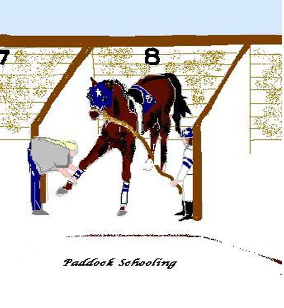Paddock Schooling by Carole Boyd