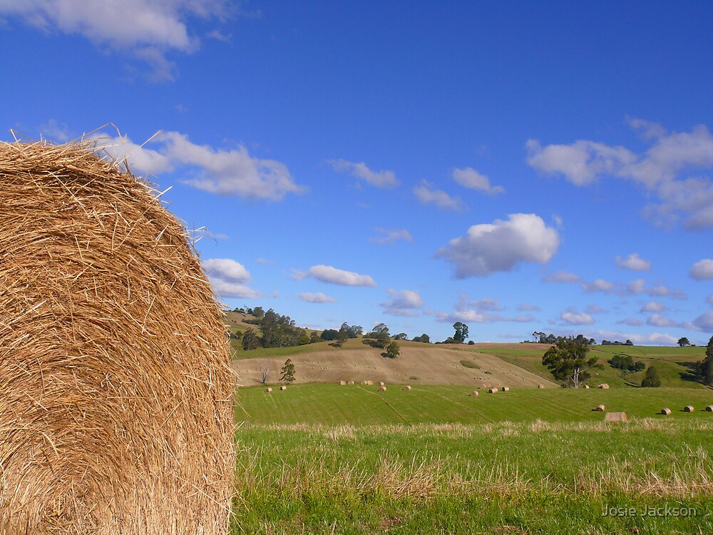 Hay Baling time by Josie Jackson