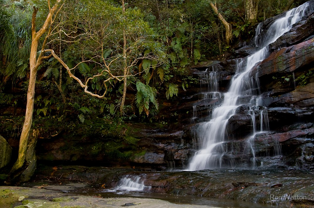 Somersby Falls by Ron Watton