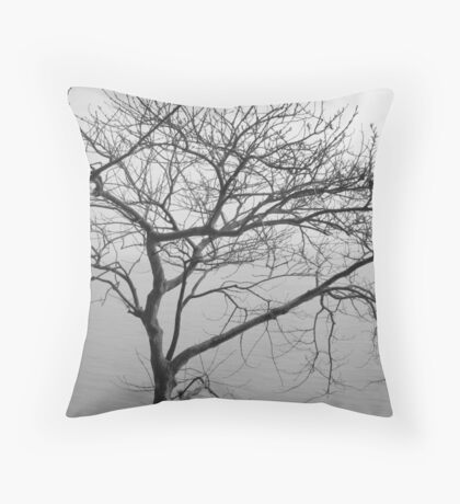 Winter woe Throw Pillow