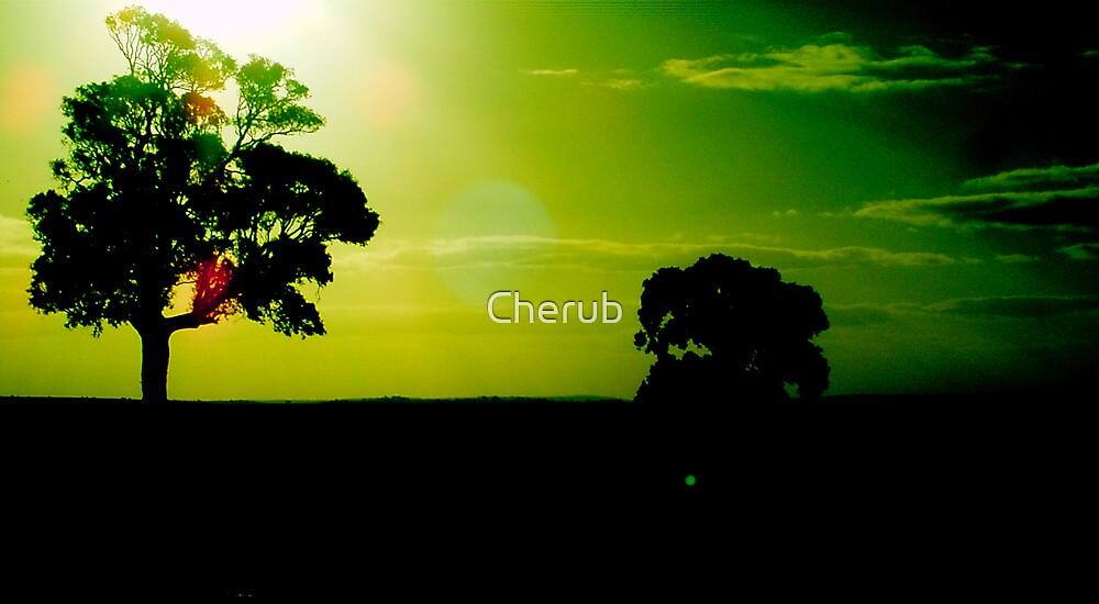 Untitled by Cherub