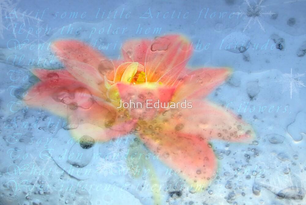 Icebound by John Edwards