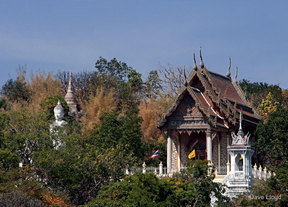 Hillside Temple by Dave Lloyd