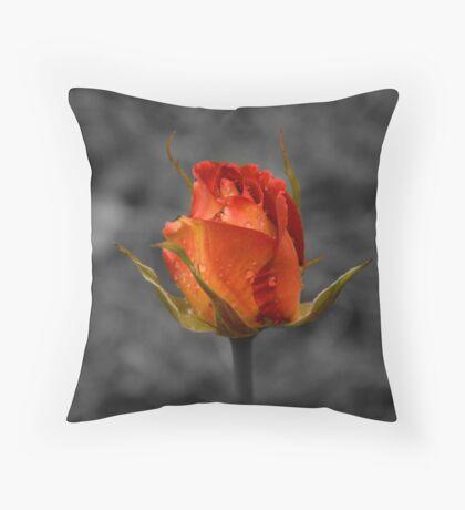 Solitary rose. Throw Pillow