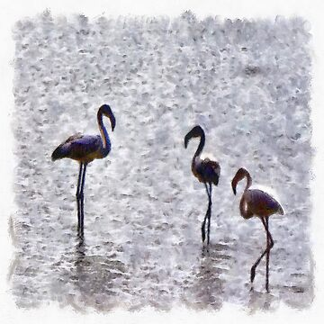 We Are The Three Flamingoes Watercolor  by taiche