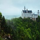 Neuschwanstein Castle Covered in Overcast Day by Hotaik  Sung