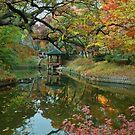 Pavilion at Secret Garden at Changdeokgung Palace, Seoul  by Hotaik  Sung
